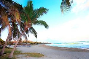 beach club area